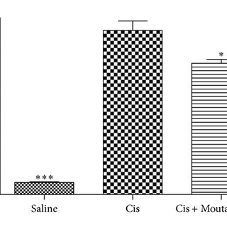 Effects of Moutan Cortex on creatinine and BUN production