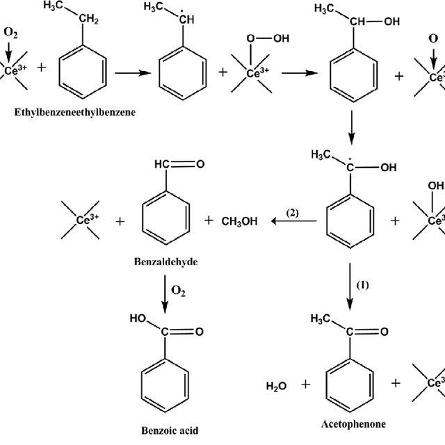Mecanismo simplificado de quebra da ligação β–O–4 em