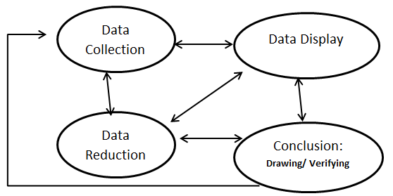 Components of Data Analysis: Interactive Model (Miles
