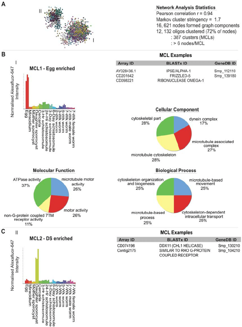 hight resolution of network analysis of the schistosome lifecycle identifies egg and daughter sporocyst enriched transcripts network