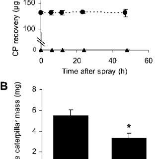 (PDF) R2R3-NaMYB8 Regulates the Accumulation of