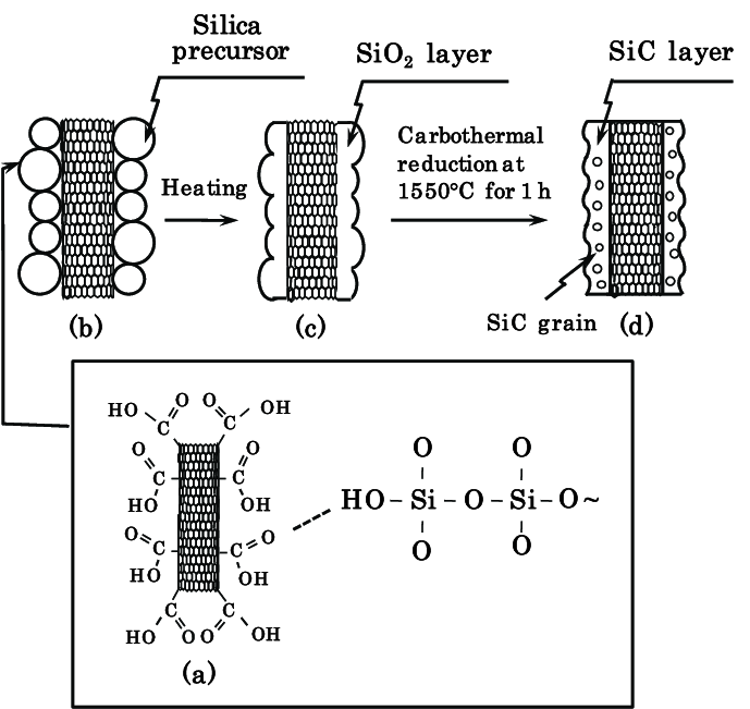 Schematic diagram of the formation of a silicon carbide