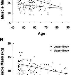 a relationship between upper body and lower body sm mass in men aged download scientific diagram [ 801 x 1380 Pixel ]