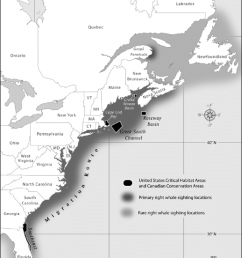 distribution of north atlantic right whale in the western atlantic the figure has been redrawn [ 850 x 1060 Pixel ]