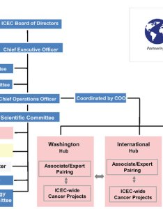 Organizational chart the structure and terms of office are detailed in business plan by laws there is  board directors overseeing also rh researchgate