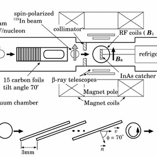 (PDF) Spin-polarization of radioactive 123Ing.s. by the
