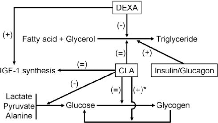 Regulation of glucose metabolism, IGF-1 synthesis and