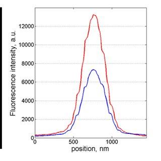 (PDF) Dual-color 3D PALM/dSTORM imaging of centrosomal