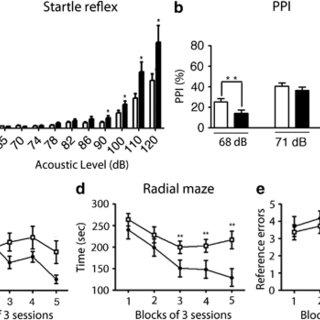 (PDF) Epigenetic Reprogramming of Cortical Neurons through