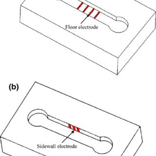 Bulk titanium sidewall electrode device process flow. ( a
