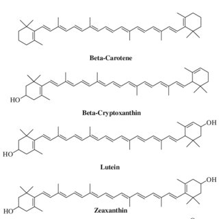 (PDF) Antioxidant activity of food constituents: An overview