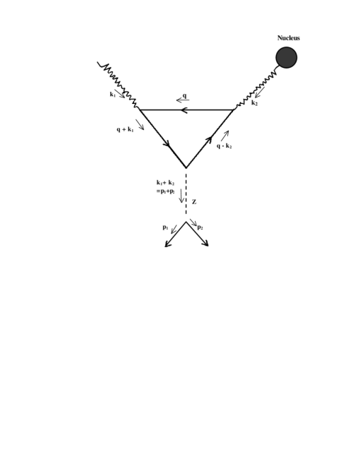 small resolution of feynman diagram for the photo coulomb neutrino process with fermionic loop through the exchange of