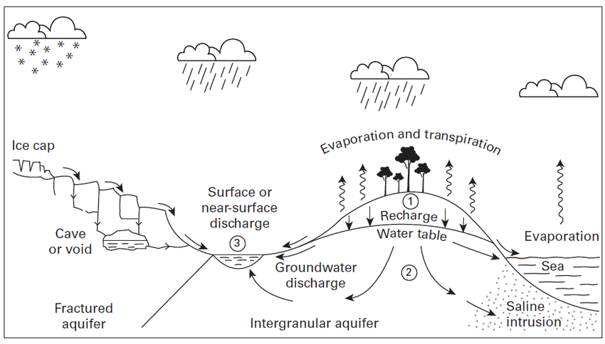 1: Schematic representation of the global hydrological