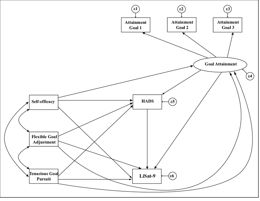 Structural equation model of direct and indirect effects