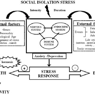 (PDF) The Effect of Psychological Stress and Social
