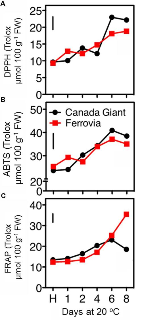 small resolution of antioxidant capacity of sweet cherry fruits cvs canada giant ferrovia