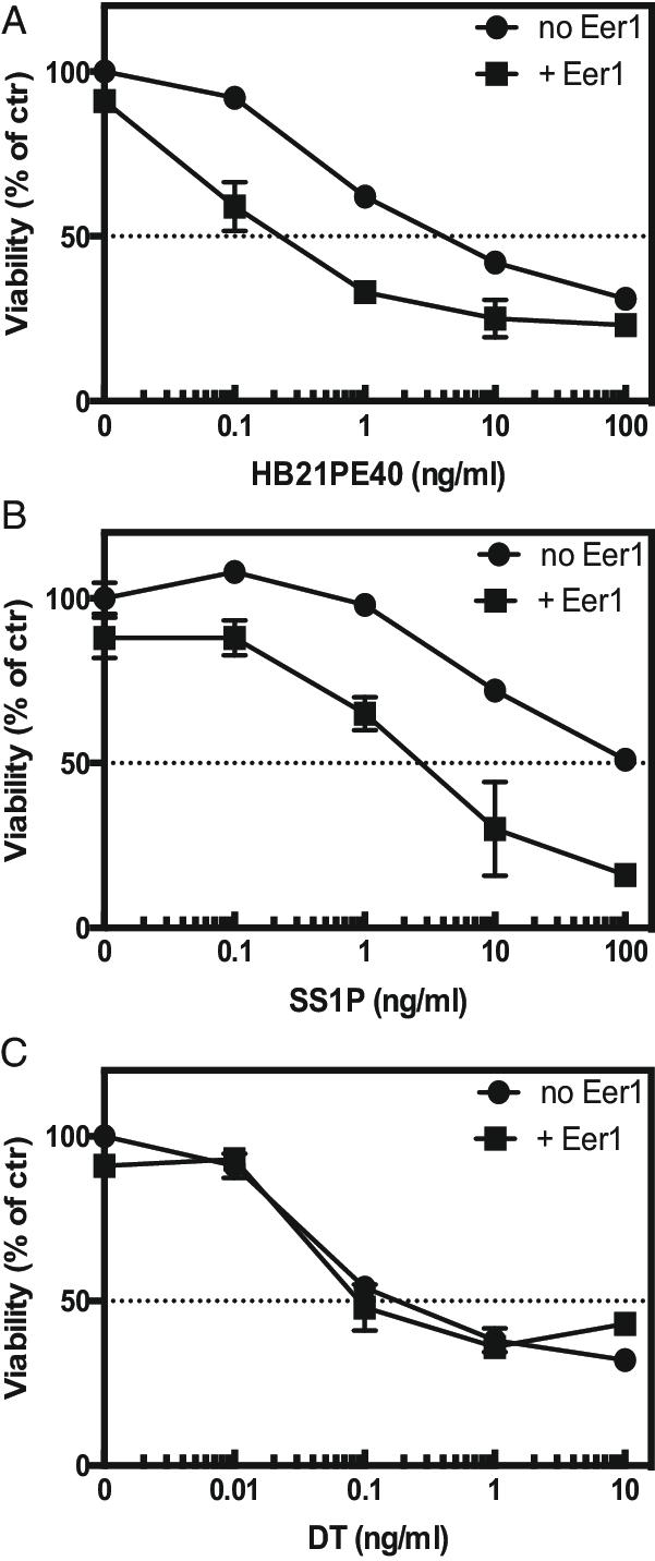 Eer1 enhances immunotoxin activity. KB cells were