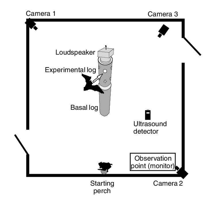 room setup diagram zafira b wiring schematic of the flight download scientific