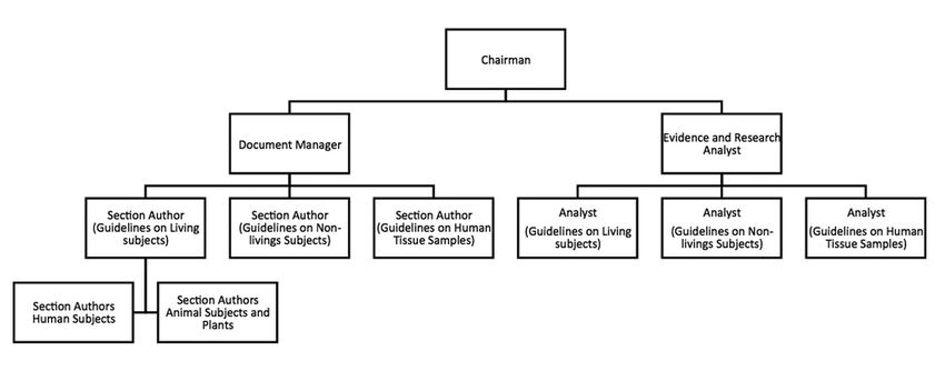 -Organizational structure of the Task Force Team, modified