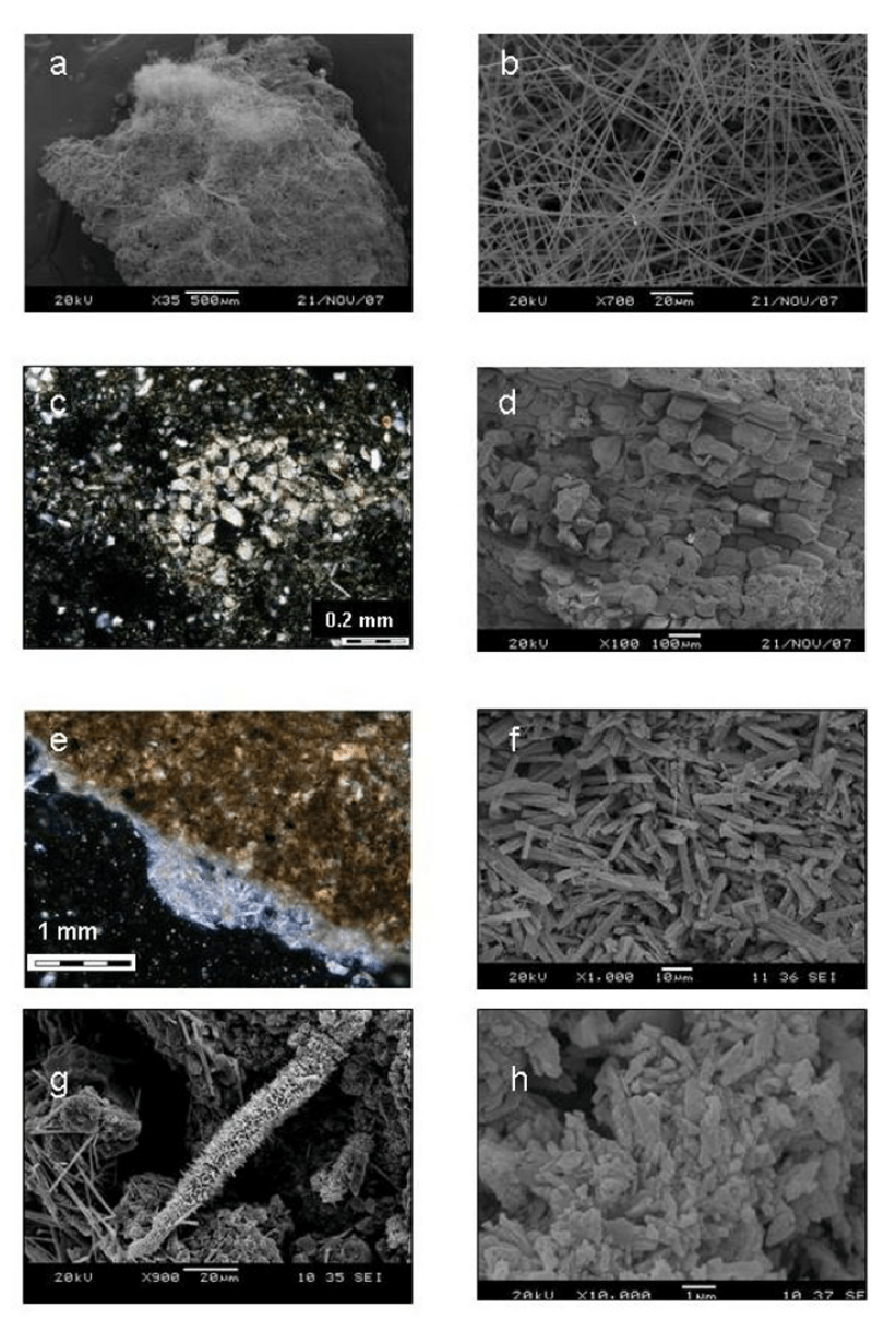 hight resolution of observations with optical microscope under cross polarized light and under sem a b