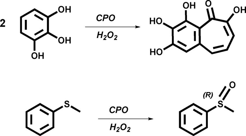 Scheme 1 Chloroperoxidase-catalyzed reactions studied in