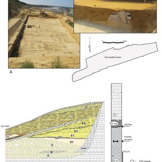 pdf middle pleistocene human remains from tourville la riviere normandy france and their archaeological context
