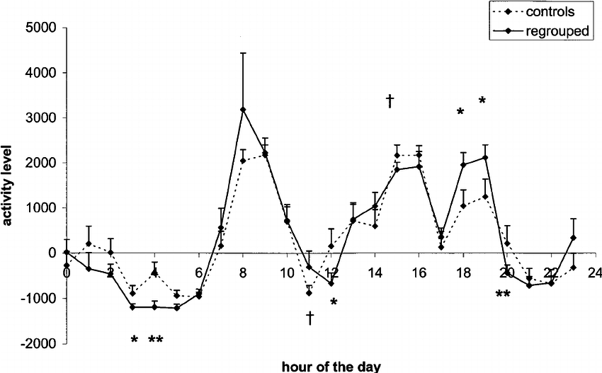 Circadian rhythm of activity after completion of mixings
