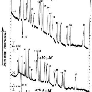 (PDF) Particle analysis using capillary electrophoresis