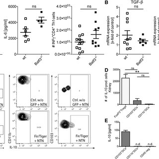 (PDF) CD103+ Kidney Dendritic Cells Protect against