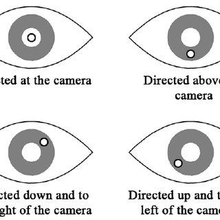 (PDF) Learner Behaviour Analysis through Eye Tracking