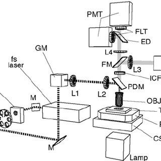 Schematic of a custom-built laser ablation setup based on