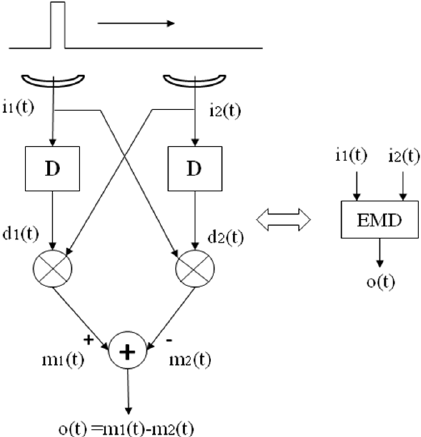 The elementary motion detector (EMD) block diagram. The