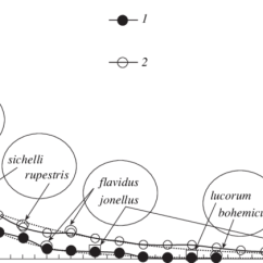 Bumble Bee Diagram Electric Winch Wiring Rank Distribution Of Species By Abundance In Biotopic Bumblebee Download Scientific