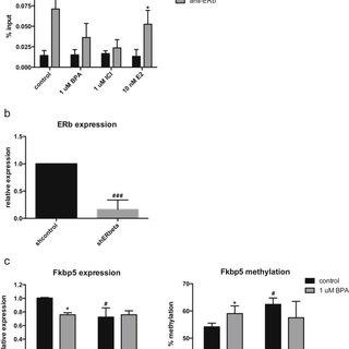 (PDF) Developmental Exposure to Bisphenol A Alters