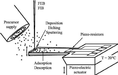 Schematic diagram of the cantilever mass sensor for FIB
