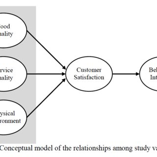 Conceptual Model of the Relationships Among Study