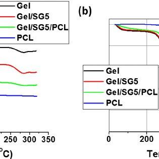 SEM images of the fibrous scaffold: (a) gelatin (Gel); (b