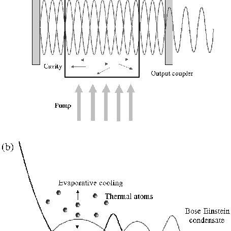 A comparison of the Bose–Einstein, Maxwell–Boltzmann and