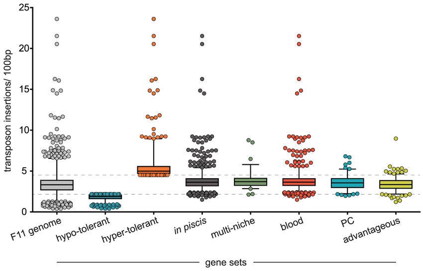 Transposon insertion rates for loci within different gene