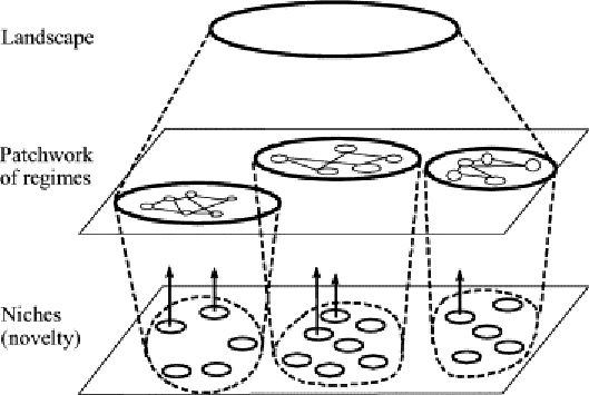 Multi-Level Perspective nested hierarchy. Source: F. W