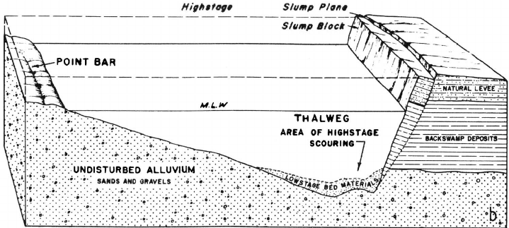 Asymmetric channel cross section typical of Mississippi