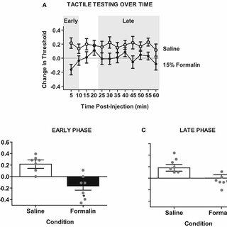 (PDF) Central nociceptive sensitization vs. Spinal cord