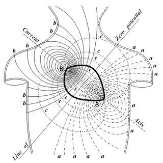 9. Stimulation experiment of Luigi Galvani. The