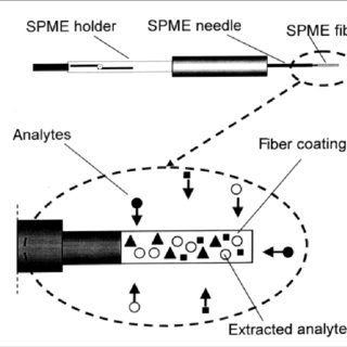SPME device (fiber coating is exposed to airborne analytes