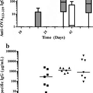 (PDF) Antigen Targeting to Major Histocompatibility