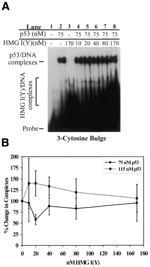 small resolution of effect of hmg i y on p53 binding to 3 cytosine bulge containing templates a hmg i y has no significant effect on p53 binding to dna containing