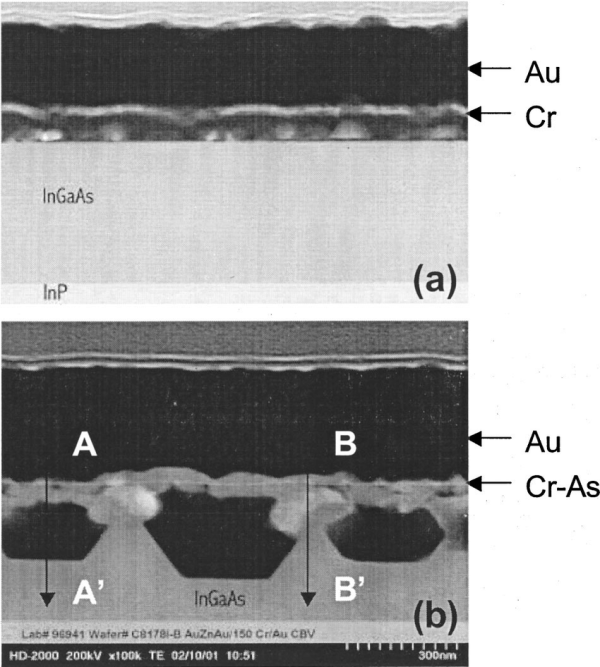 Stem Cross-section Of -deposited And Alloyed