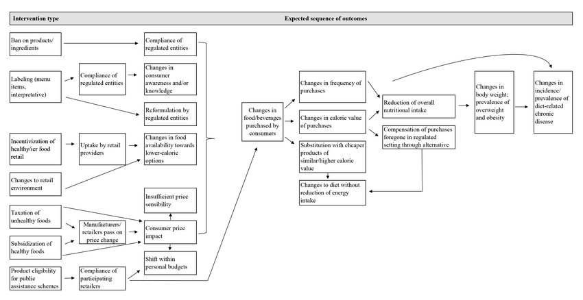 Logic model of assume pathways from interventions to