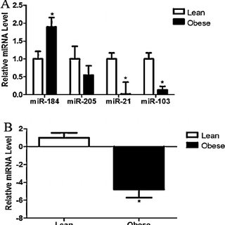 (PDF) High fat diet induced obesity alters ovarian