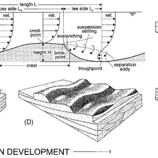 (PDF) Ripple, ripple mark, ripple structure